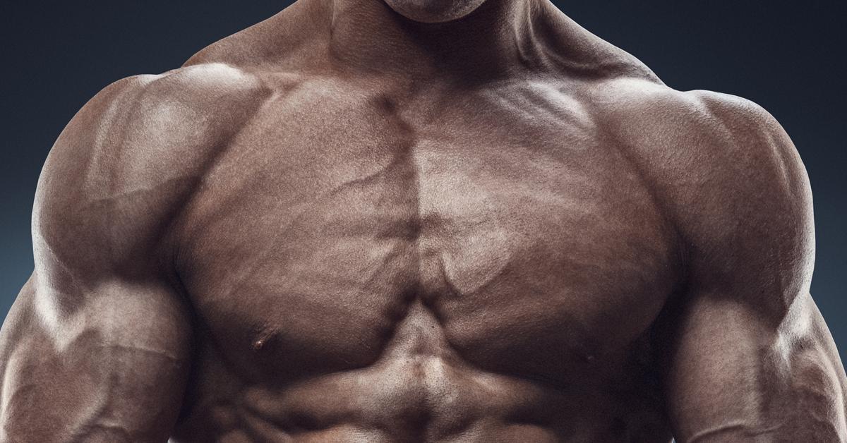 brustmuskel-og.png