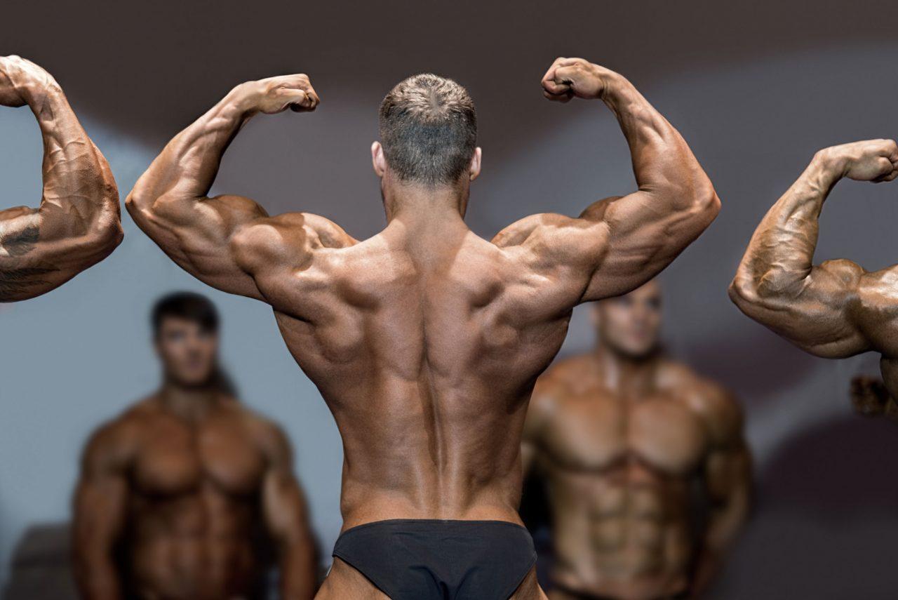 bodybuilding-news-1280x855.jpg